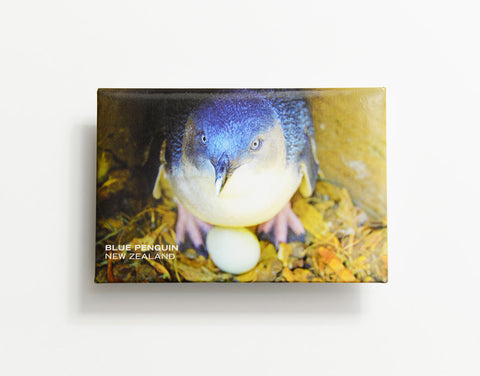 MTS1047 - Sisson Magnet - Blue Penguin On Egg