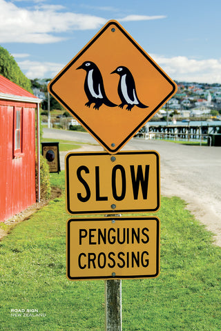 PCL1048 - Sisson Postcard - Penguins Crossing Sign