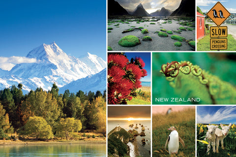 PCL1053 - Sisson Postcard - Medley: Green New Zealand