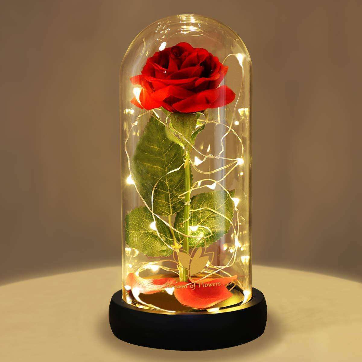 Magnificent Glass Domed Light Up LED Roses, Magnificent Glass Domed Light Up LED Roses,In God's Service Store