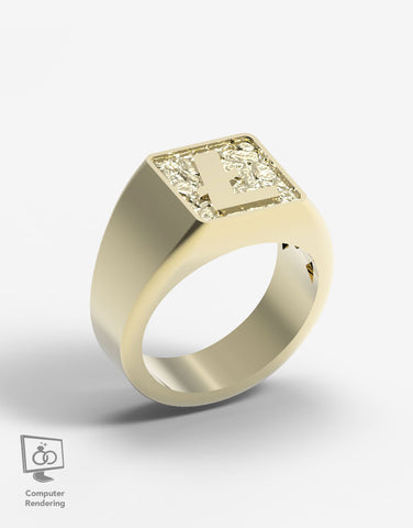 Litecoin Ring in 14k Gold