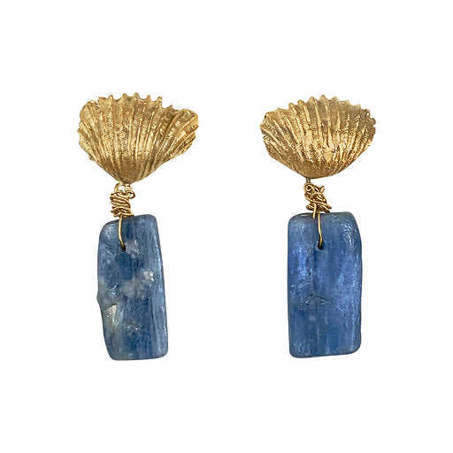 Stunning Kyanite Shell Earrings