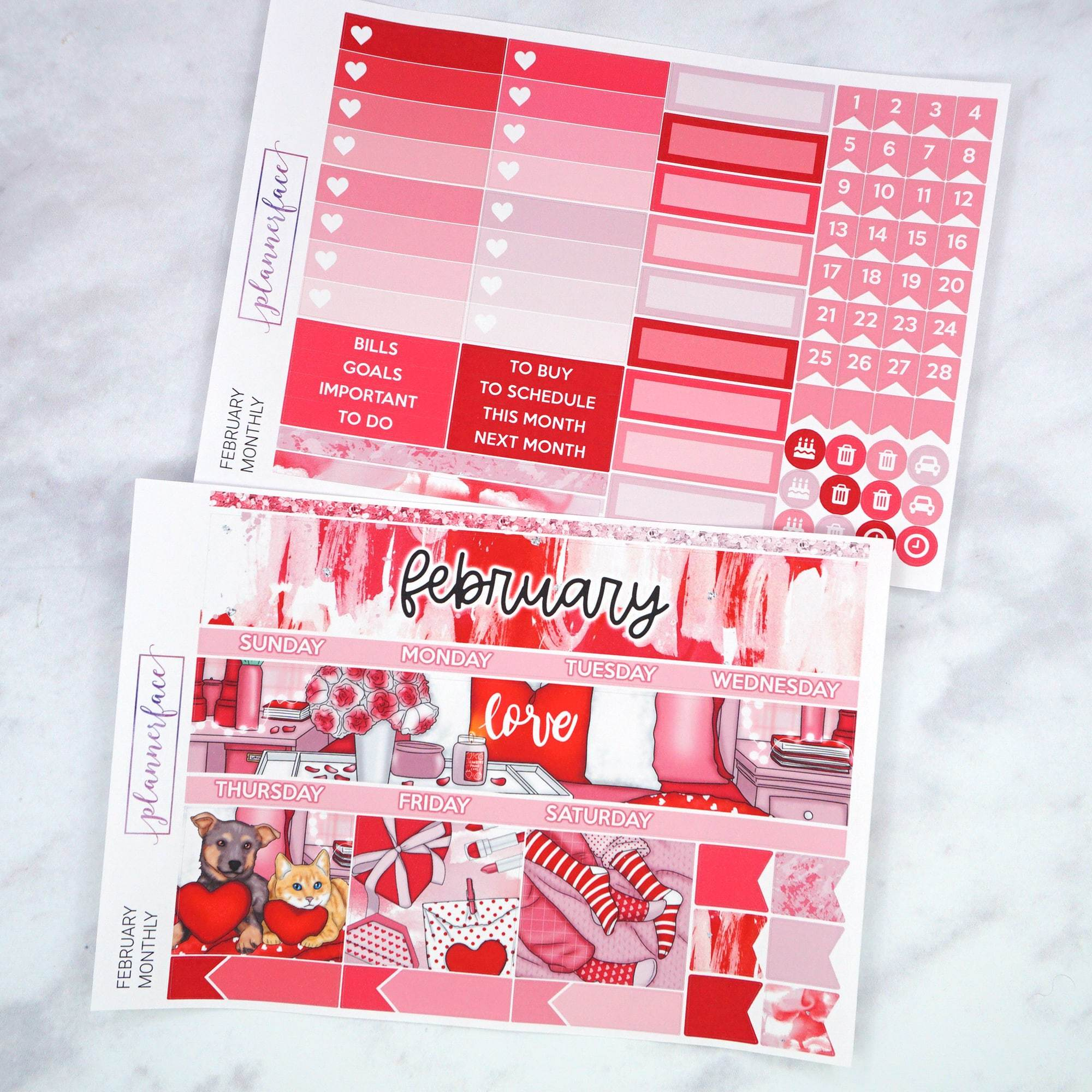 Plannerface February Monthly Kit Planner Stickers