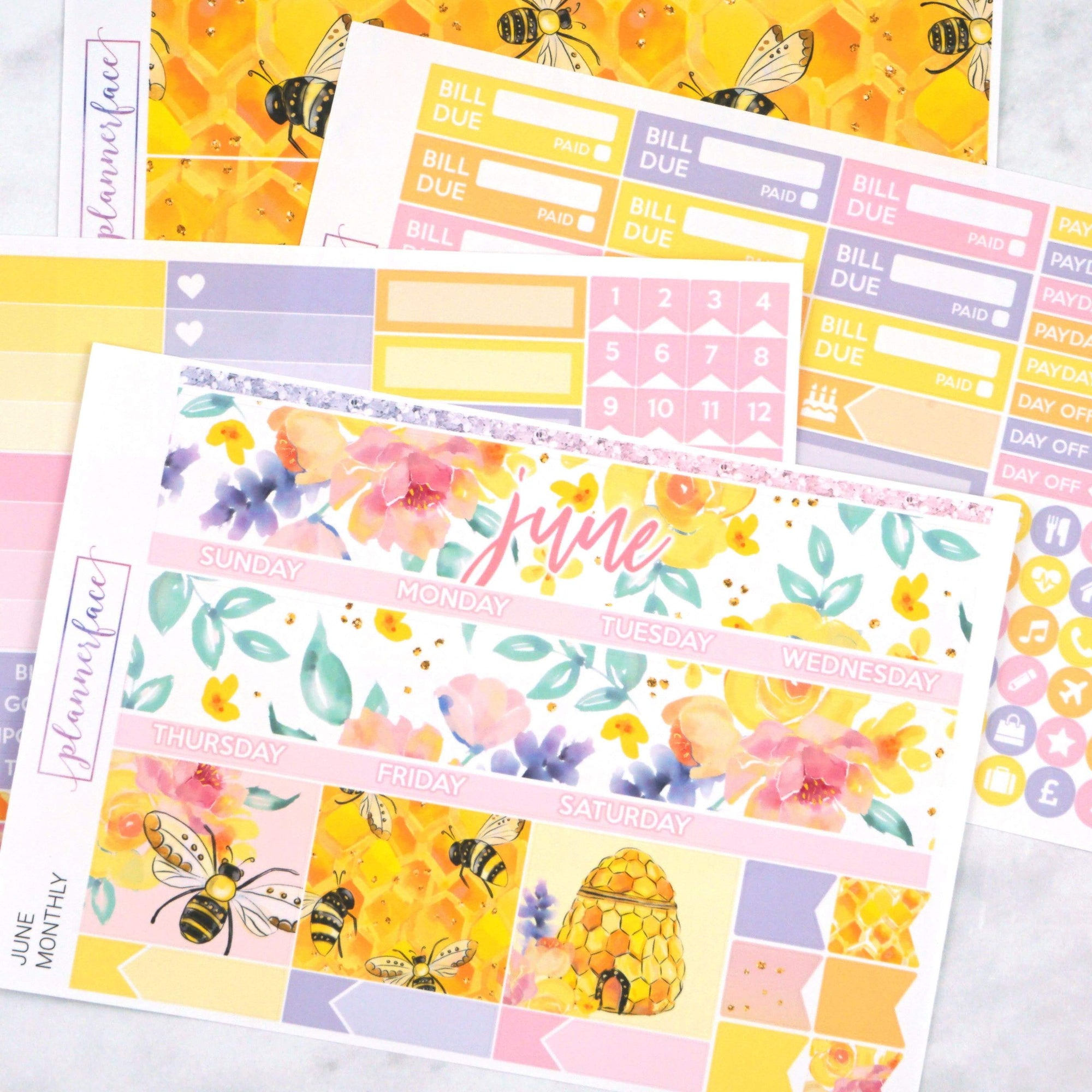 Plannerface June Monthly Kit Planner Stickers