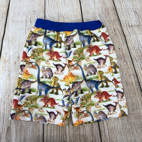 Watercolour Dinosaur Swim Trunks