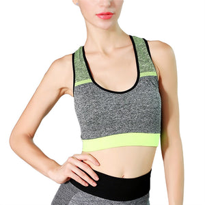 High Intensity Sports Bra Vest Seamless Stretchy Breathable Fitness Underwear for Fitness Gym Yoga Running | FajasShapewear.com