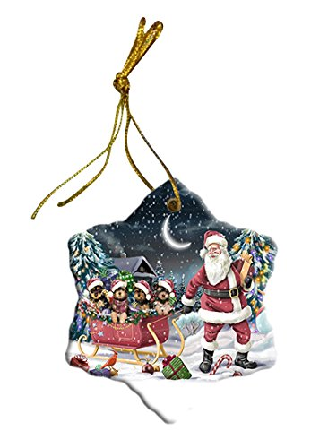Santa Sled Dogs Yorkshire Terrier Christmas Star Ornament POR2737