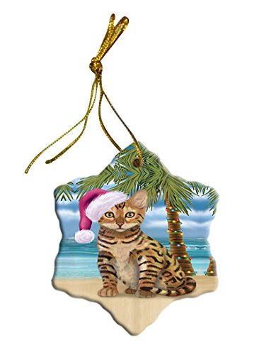 Summertime Chinese Li Hua Cat on Beach Christmas Star Ornament POR2835