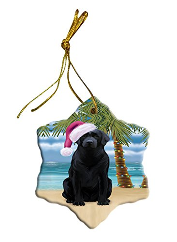 Summertime Labrador Dog on Beach Christmas Star Ornament POR2879