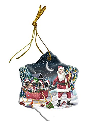 Santa Sled Dogs Anatolian Shepherd Christmas Star Ornament POR2728