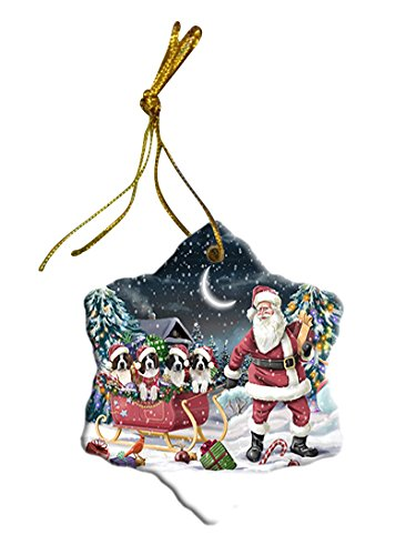 Santa Sled Dogs Saint Bernard Christmas Star Ornament POR2745