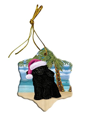 Summertime Poodle Dog on Beach Christmas Star Ornament POR2931