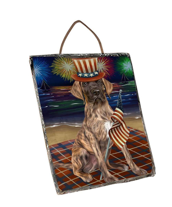 4th of July Independence Day Firework Great Dane Dog Wall Décor Hanging Photo Slate SLTH48914