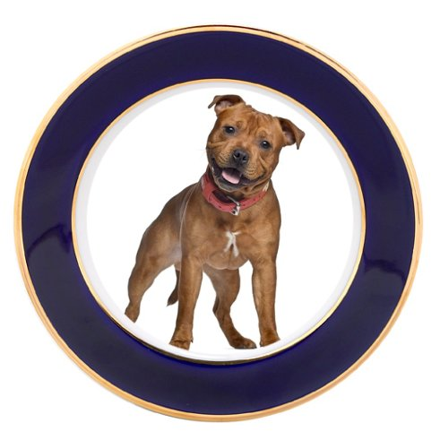 Staffordshire Bull Terrier Dog Porcelain Plate