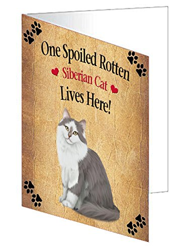 Spoiled Rotten Siberian Cat Greeting Card