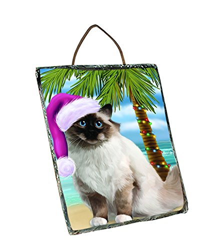 Summertime Birman Cat with Santa Hat Christmas Wall Décor Hanging Photo Slate SLTH758