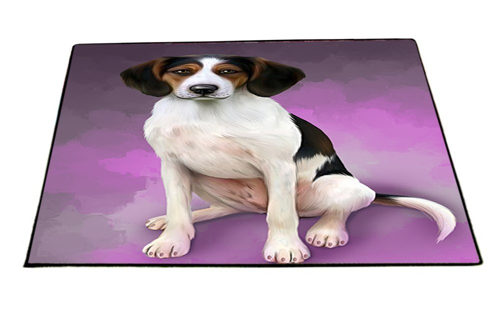 Treeing Walker Coonhounds Dog Indoor/Outdoor Floormat D165