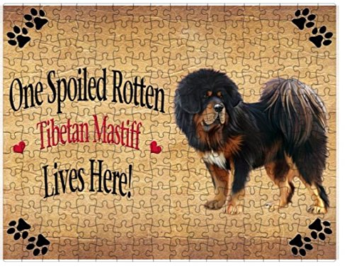 Spoiled Rotten Tibetan Mastiff Dog Puzzle with Photo Tin