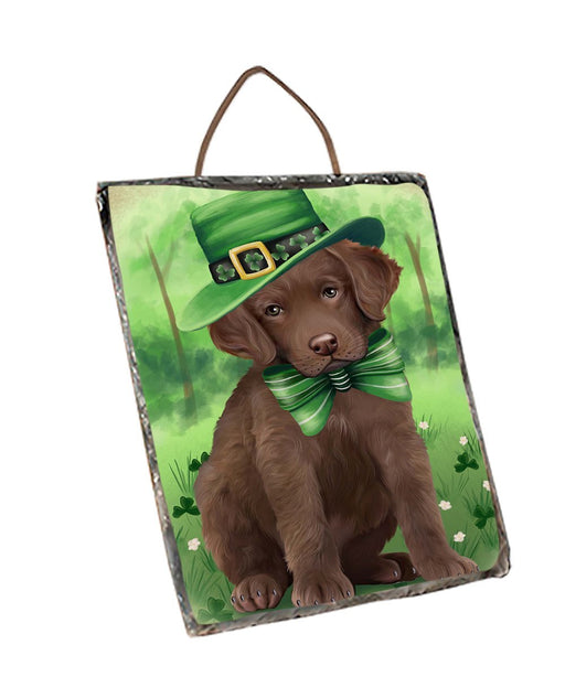 St. Patricks Day Irish Portrait Chesapeake Bay Retriever Dog Wall Décor Hanging Photo Slate SLTH48771