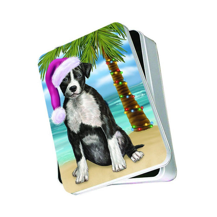 Summertime American Staffordshire Dog on Beach Christmas Photo Storage Tin PTIN0743