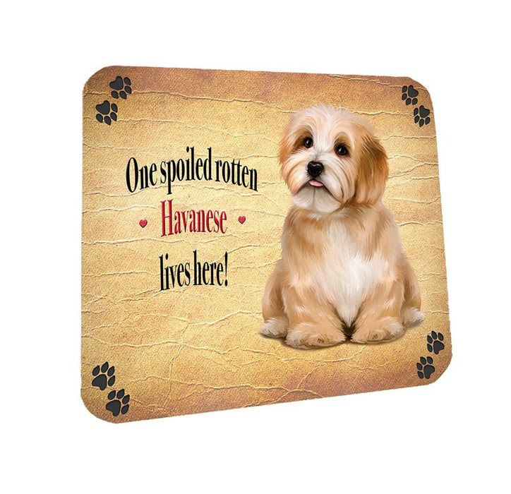 Spoiled Rotten Havanese Dog Coasters Set of 4
