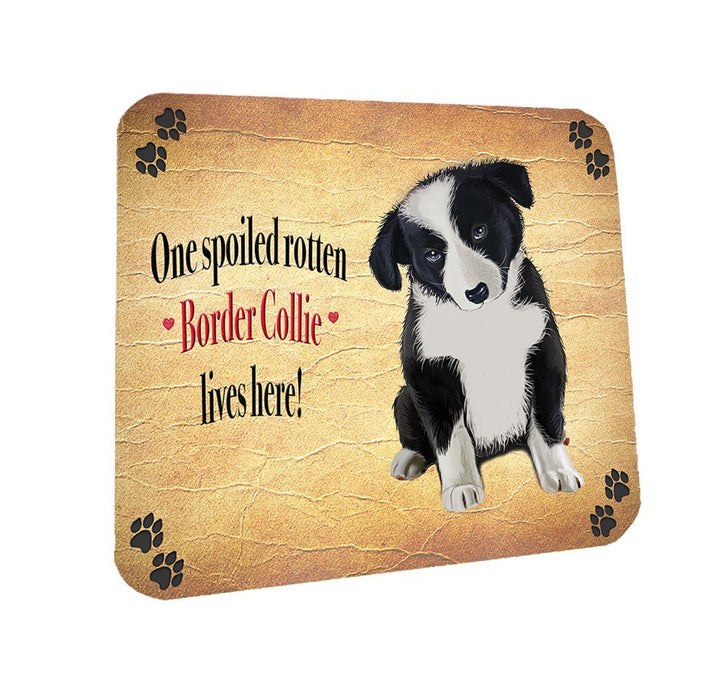 Spoiled Rotten Border Collie Dog Coasters Set of 4