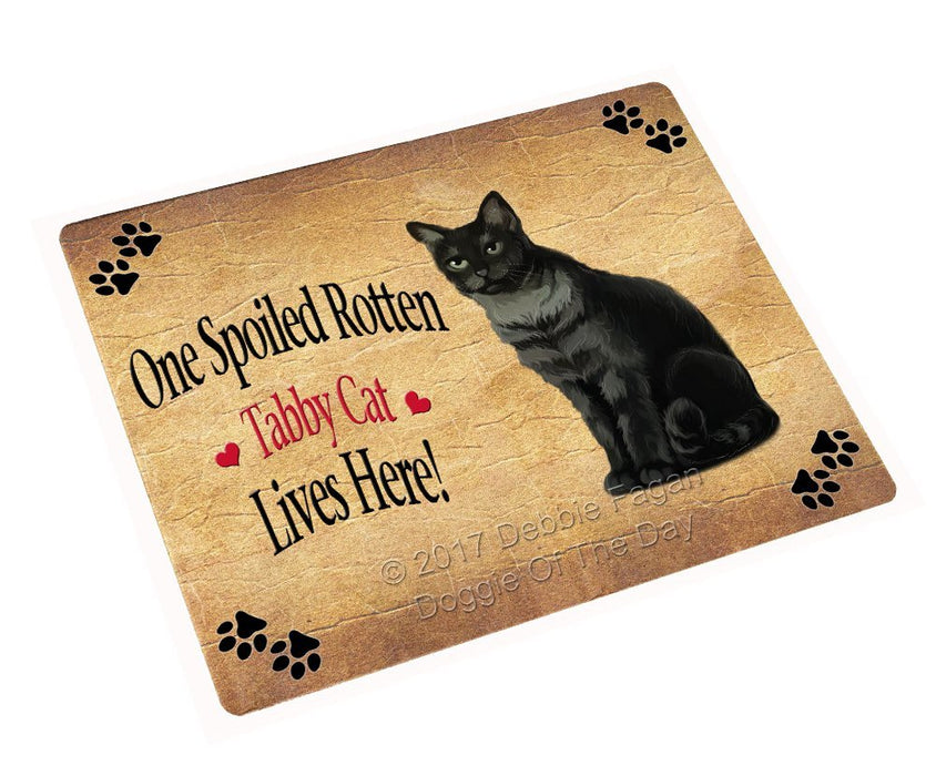 Spoiled Rotten Tabby Cat Large Refrigerator / Dishwasher Magnet