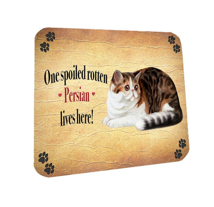 Spoiled Rotten Persian Cat Coasters Set of 4