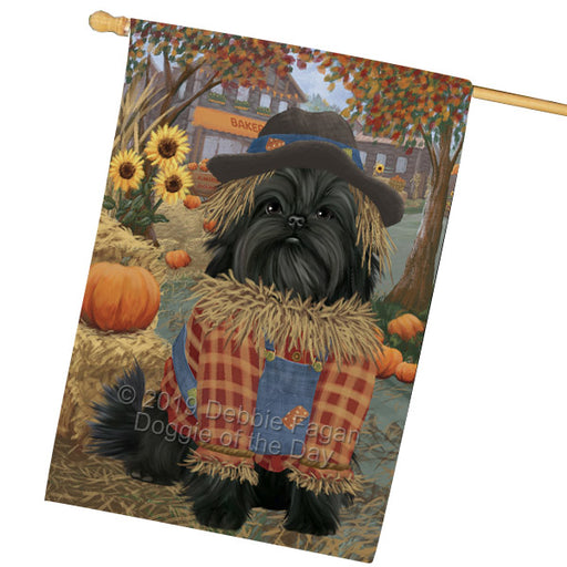 Halloween Round Town And Fall Pumpking Scarecrow Both Affenpinscher Dogs Garden Flag GFLG65616