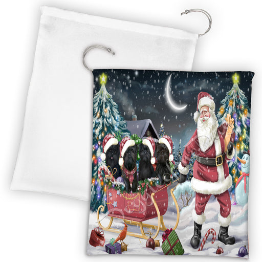 Santa Sled Dogs Christmas Happy Holidays Affenpinscher Dogs Drawstring Laundry or Gift Bag LGB48654