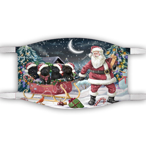 Santa Sled Dogs Christmas Happy Holidays Affenpinscher Dogs Face Mask FM48952