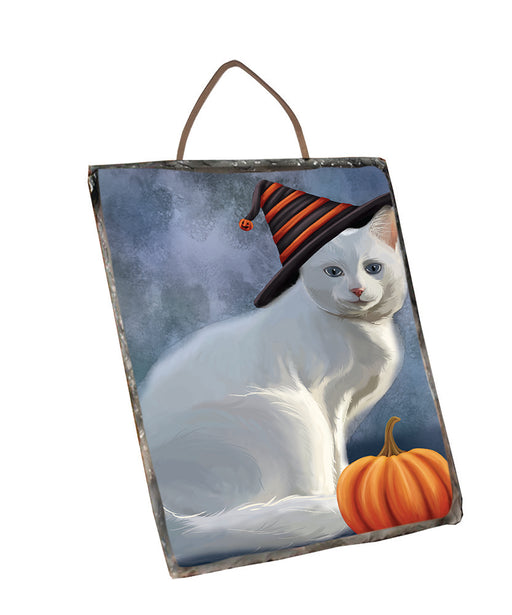 Happy Halloween Albino Cat Wearing Witch Hat with Pumpkin Wall Décor Hanging Photo Slate SLTH57890