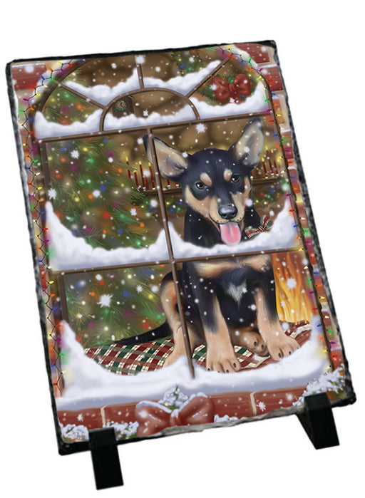 Please Come Home For Christmas Australian Kelpie Dog Sitting In Window Sitting Photo Slate SLT57554