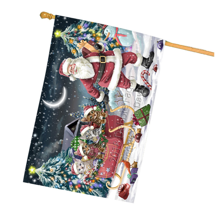 Santa Sled Dogs Christmas Happy Holidays Bengal Cats House Flag FLG51846