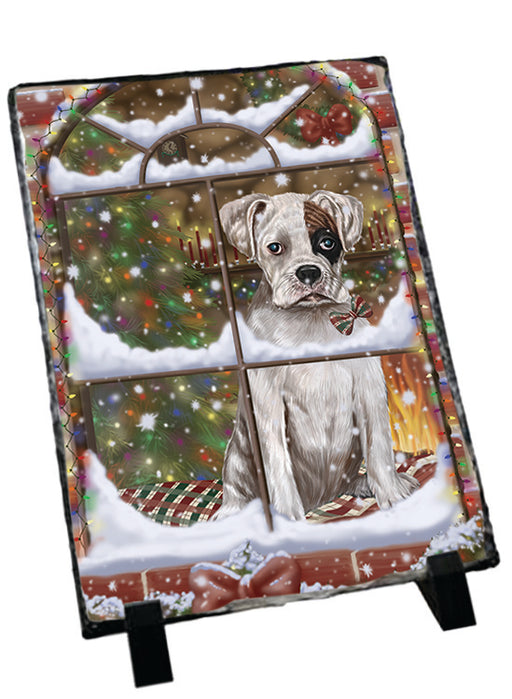 Please Come Home For Christmas Boxer Dog Sitting In Window Sitting Photo Slate SLT57556
