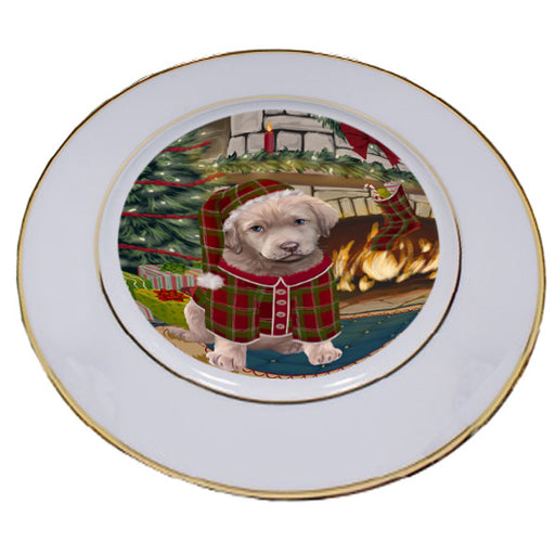 The Stocking was Hung Chesapeake Bay Retriever Dog Porcelain Plate PLT53617
