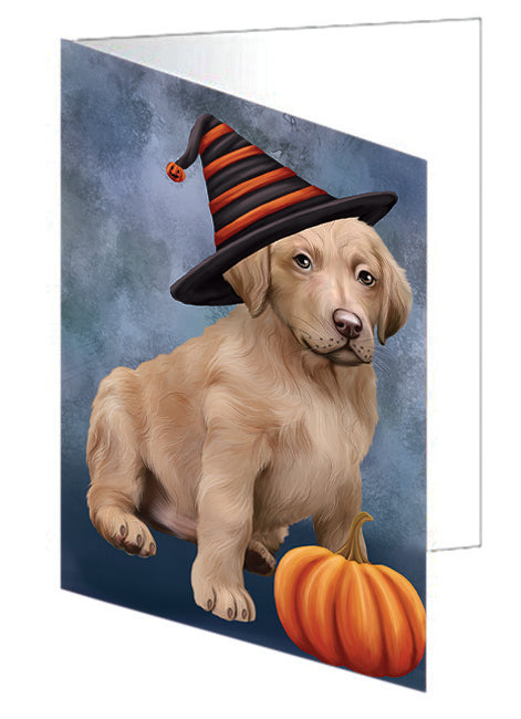 Happy Halloween Chesapeake Bay Retriever Dog Wearing Witch Hat with Pumpkin Note Card NCD68801