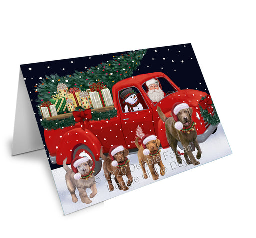 Christmas Express Delivery Red Truck Running Chesapeake Bay Retriever Dogs Greeting Card GCD75101