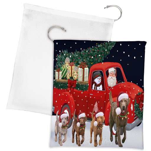 Christmas Express Delivery Red Truck Running Chesapeake Bay Retriever Dogs Drawstring Laundry or Gift Bag LGB48889