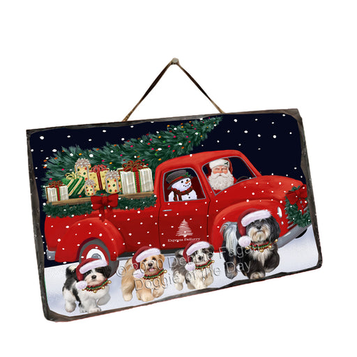 Christmas Express Delivery Red Truck Running Havanese Dogs Wall Décor Hanging Photo Slate SLTH58164