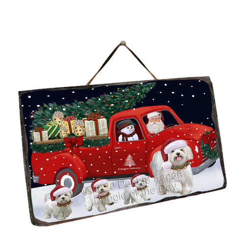 Christmas Express Delivery Red Truck Running Maltese Dogs Wall Décor Hanging Photo Slate SLTH58168
