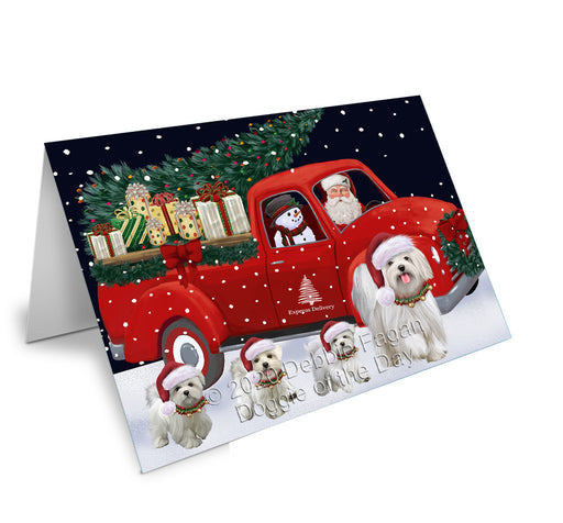 Christmas Express Delivery Red Truck Running Maltese Dogs Greeting Card GCD75164