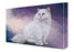 Persian Cat Canvas Wall Art CVS48261