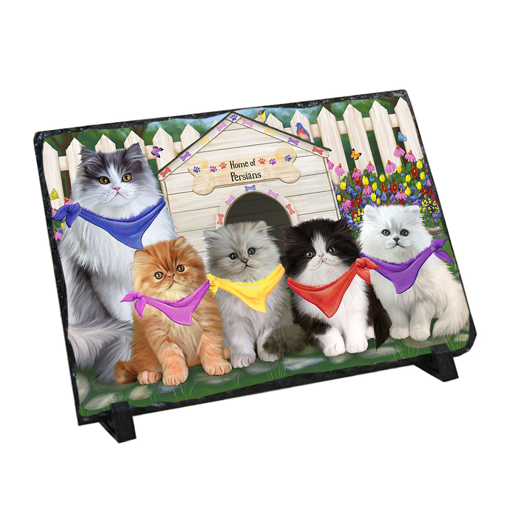 Spring Dog House Persian Cats Photo Slate SLT49927
