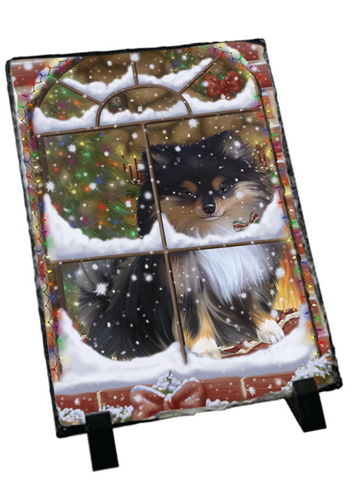 Please Come Home For Christmas Pomeranian Dog Sitting In Window Sitting Photo Slate SLT57561