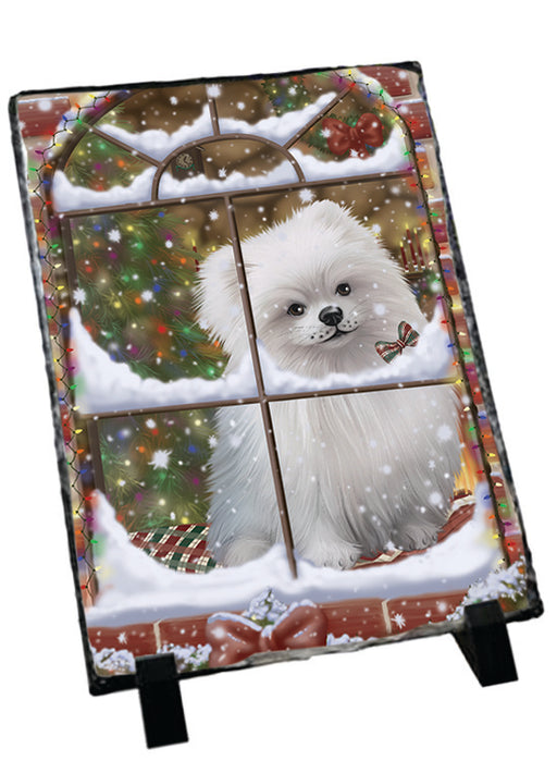 Please Come Home For Christmas Pomeranian Dog Sitting In Window Sitting Photo Slate SLT57562