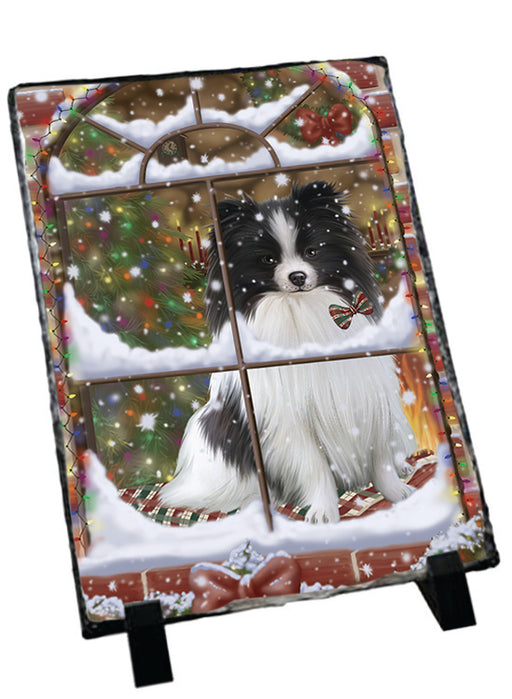 Please Come Home For Christmas Pomeranian Dog Sitting In Window Sitting Photo Slate SLT57563
