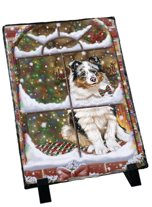 Please Come Home For Christmas Shetland Sheepdog Sitting In Window Sitting Photo Slate SLT57564