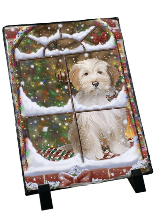 Please Come Home For Christmas Tibetan Terrier Dog Sitting In Window Sitting Photo Slate SLT57567