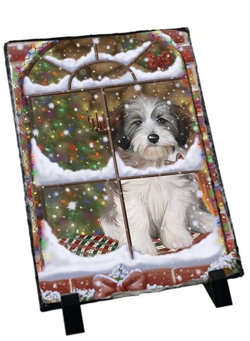 Please Come Home For Christmas Tibetan Terrier Dog Sitting In Window Sitting Photo Slate SLT57568